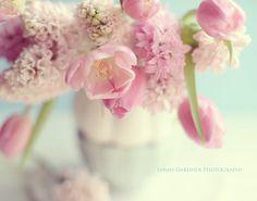 Spring (Photography by Sarah Gardner)