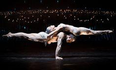 Amazing Cirque. <3