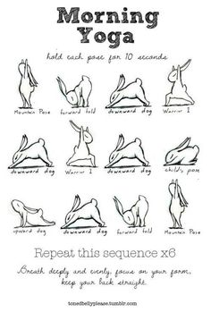 Rabbit Morning Yoga (: