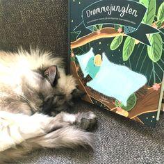 Drømmejunglen af Anna Knakkergaard og Julie Dam er en bog målrettet børn i alderen 4 til 10 år, der har udfordringer med at sove. Man møder 6 historier med dyrebørn, som af mange forskellige årsager ikke kan finde ro og sove. Børnebogen giver dit barn mulighed for at hjælpe de mange dyrebørn med at falde i søvn og sove, og ja jeg måtte da selv sidde og kæmpe med de tunge øjenlåg som forældre. Klik på forsidefotoet/linket og læs vores anmeldelse. Dam, Anna, Illustrator, Cover, Illustrators