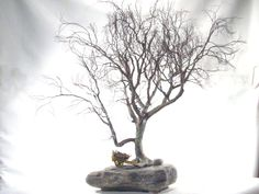 Copper wire tree - penjing style
