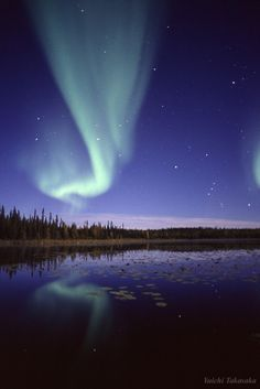 Aurora Borealis - Ingraham Trail in Northwest Territories, Canada. カナダでもオーロラ見られるんですね~