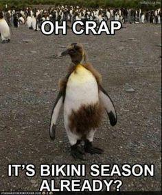 Good thing I don't wear bikinis! Ha