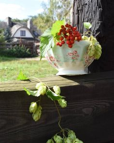 #summertime #farm #greengate #greengateofficial #betty #mint #bowl #red #green  Jeszcze mamy lato! 😉 Cudownego dnia 🌻 We still  have summer! 😉 Have a wonderful day 🌸