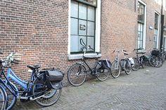 The Netherlands, wonderful and sunny days! on Behance