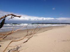 Windswept Inverloch Beach (South Gippsland, Victoria, Australia) Places Around The World, Around The Worlds, Victoria Beach, Phillips Island, Us Beaches, Victoria Australia, Day Trips, Places Ive Been, Scenery
