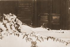 sainte-Therese-de-Lisieux, photo taken by her sister Celine . Catholic Art, Catholic Saints, Roman Catholic, Religious Art, Sainte Therese De Lisieux, Ste Therese, Incorruptible Saints, Powerful Pictures, Santa Teresa