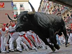 Bull running in Pamplona is held every year between July! Pamplona, Festivals Around The World, Travel Around The World, Future Of Science, Running Of The Bulls, Bucking Bulls, Cultural Events, Crazy People, Trees To Plant