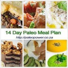 14 Day Paleo Diet Plan With Meal & Food Ideas