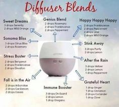 Humidifier, Vaporizer or Diffuser. . .