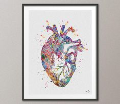 Heart Anatomy Watercolor Print Cardiology Decor Medical Art