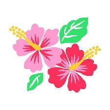 Clip Art Hibiscus Flower Clipart cliparthibiscusflower madelyn hibiscus clip art sketch me flower clipart images icons free graphics found on polyvore
