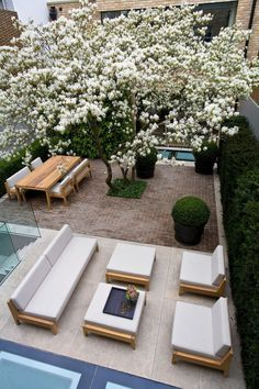 Another view of a stylish garden