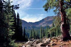#Taos Ski Valley: Untamed Spirit