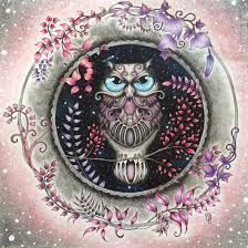 Image result for floresta encantada livro coruja