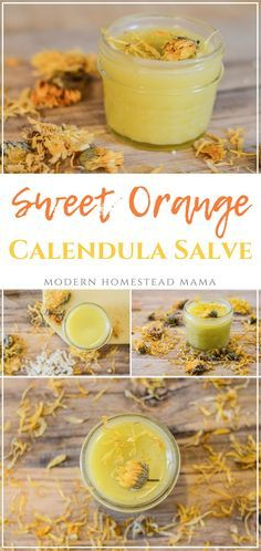 DIY Sweet Orange Calendula Salve - Modern Homestead Mama