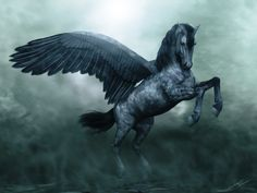 Pegasus @nikki striefler striefler Campbell   Okay so person I pinned this from said this was a flying horse...... -.-