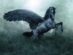 Horses: Pegasus on Pinterest | Pegasus, Unicorns and Fantasy