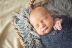 Newborn Photography Tips for the Perfect Shoot! Templates and everything you need to know