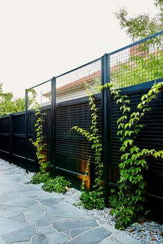 40 Unique Garden Fence Decoration Ideas Fence is also an important part of your garden or yard as it takes up a large space of your garden. So you should also pay attention on it and decorate it. So it's time to wake up your creativity… Continue Reading → Backyard Fences, Backyard Landscaping, Black Garden Fence, Backyard Privacy Trees, Deck Privacy Screens, Driveway Fence, Landscaping Edging, Patio Fence, Garden Frame