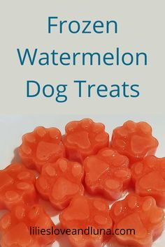 Easy to make frozen watermelon dog treats with only 2 ingredients.