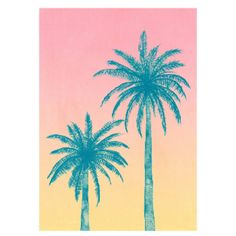 Palm Trees A2 Unframed Print ($36) ❤ liked on Polyvore featuring home, home decor, wall art, tropical palms, tropical home decor, white palm tree, white home decor and sunset wall art