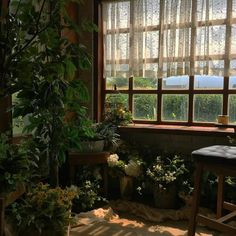 aesthetic nature rooms cottagecore plant honeycore weheartit cottage decor wallpapers quotes grandmacore future deco cosy