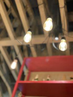 Track Lighting, Bulb, Ceiling Lights, Random, Home Decor, Homemade Home Decor, Onion, Ceiling Lamps, Interior Design