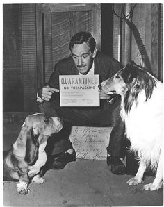 Arthur played Doc Weaver on the famous Lassie series. He died of cancer in The message reads: To Stevie - From Doc Weaver in Lassie- Arthur Space Rough Collie, Collie Dog, Dog Tv Shows, Vintage Tv, In Loving Memory, Old Tv, Golden Age Of Hollywood, Sheltie, Beagle