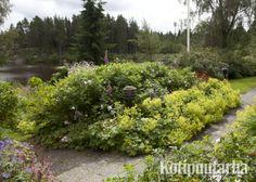 Puutarhan valaistuksen voi huoletta jättää istutusalueen keskelle, jossa valo korostaa kasvien lehtiä pimeällä ja ohjaa kulkua polulla. www.kotipuutarha.fi