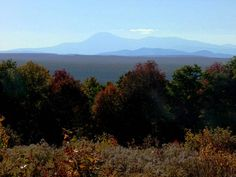 Land In Maine, Want Some To Build A Home On? #mainehousesites info@mooersrealty.com 207.532.6573