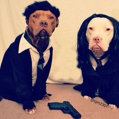 Ready for Halloween... Pup Fiction!