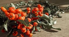 wreath Stuffed Peppers, Wreaths, Vegetables, Diy, Food, Door Wreaths, Bricolage, Stuffed Pepper, Essen