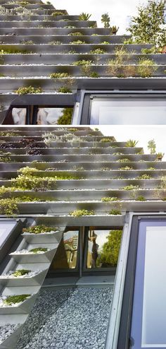 This green roof on a home in London, has a series of terraced stainless steel planters filled with over 800 plants. Pergola Plans, Diy Pergola, Pergola Ideas, Metal Pergola, Metal Roof Colors, Roofing Options, Residential Roofing, Steel Roofing, Rooftop Deck