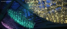 Bruce Munro Light Show Mar.1 2014 Franklin Park Conservatory Columbus, Ohio Going this evening with Candi