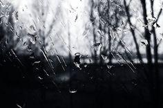 Rainy Day (Drop On Window)