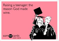 Raising a teenager...God help me!