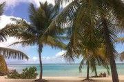 le savannah appartement  de standing T2 sur le lagon de st francois - Location Appartement #Guadeloupe #SaintFrancois