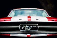 Mustang - again - my FAVORITE <3