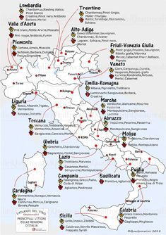 italian main dishes - Expolore the best and the special ideas about Wine pairings Guide Vin, Wine Guide, Wein Parties, Italian Main Dishes, Wine Cellar Racks, Wine Facts, Wine Education, Wine Tasting Party, Italian Wine