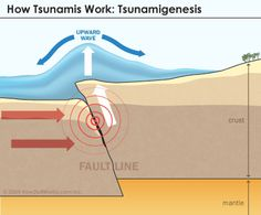Shows how the 2004 tsunami, and most tsunamis form. http://science.howstuffworks.com/nature/natural-disasters/tsunami2.htm