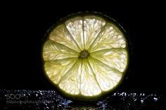 Lime #daleholman #daleholmanmaine