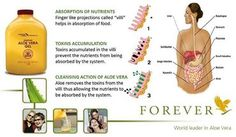 This amazing stabilised inner leaf of aloe, help for many support your healthy life style. Forever Living Aloe Vera, Forever Aloe, Aloe Benefits, Clean9, Forever Living Business, Forever Living Products, Health And Wellbeing, Weight Management, Natural Healing