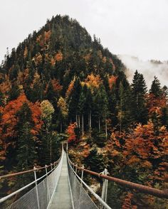 Uploaded by Noa. Find images and videos about photography, nature and travel on We Heart It - the app to get lost in what you love. Oh The Places You'll Go, Places To Visit, Beautiful World, Beautiful Places, Wanderlust, Autumn Aesthetic, Travel Aesthetic, Adventure Aesthetic, Autumn Photography