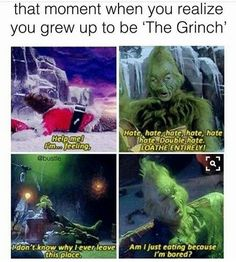 I don't see the problem. I've always been quite fond of the grinch, now I know why☺