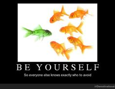 Be yourself - Imgur