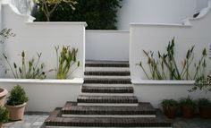 like the steps and trough planting of lilies Clifton Houses, South African Art, Internal Courtyard, Wall Spaces, Water Features, Seaside, Beautiful Homes, Backdrops, Home And Family