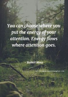 you can choose where you put the energy of your attention. energy flows where attention goes. Good Quotes, Me Quotes, Motivational Quotes, Inspirational Quotes, Positive Vibes, Positive Quotes, Positive Mind, Quotable Quotes, Meaningful Quotes