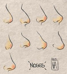 Types of noses drawing stuff in 2019 art reference, art, drawings. Nose Drawing, Drawing Poses, Drawing Tips, Drawing Hands, Drawing Ideas, Realistic Eye Drawing, Modern Drawing, Drawing Stuff, Drawing Art