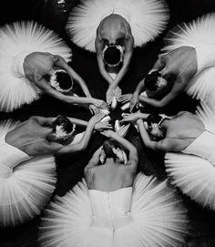 The Unseen Beauty of the Belgrade Ballet ~